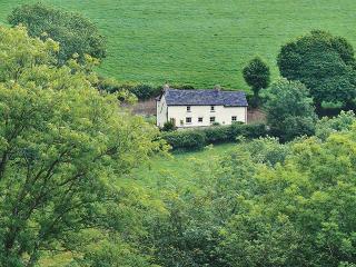 Bwlchnewydd Wales Vacation Rentals - Home