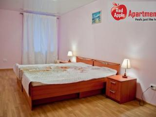 Saint Petersburg Russia Vacation Rentals - Apartment