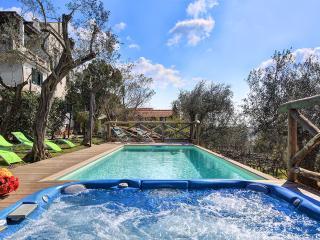 The amazing pool with jacuzzi