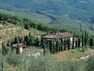 Chianti Italy Vacation Rentals - Home