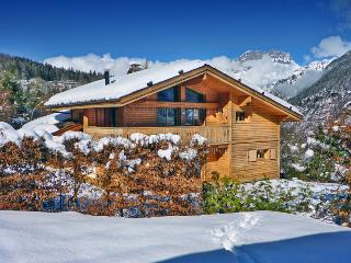 Chamonix France Vacation Rentals - Home