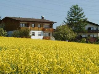 Bad Bellingen Germany Vacation Rentals - Apartment