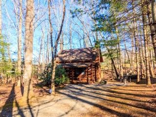 Cosby Tennessee Vacation Rentals - Cabin