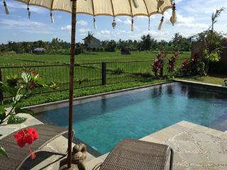 Ubud Indonesia Vacation Rentals - Home