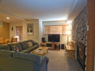 Mammoth Lakes California Vacation Rentals - Apartment