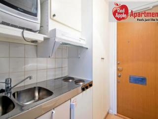 Stockholm Sweden Vacation Rentals - Studio