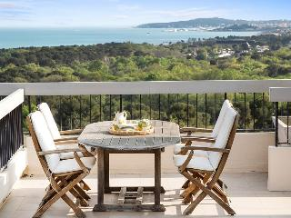 Villeneuve-Loubet France Vacation Rentals - Apartment