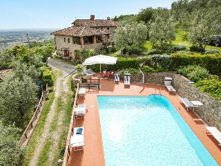 Larciano Italy Vacation Rentals - Villa