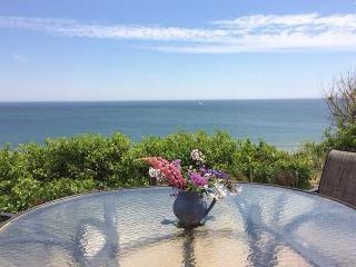 Eastham Massachusetts Vacation Rentals - Cottage