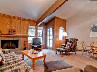 Ketchum Idaho Vacation Rentals - Apartment