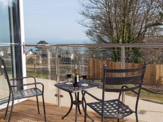 Saint Austell England Vacation Rentals - Apartment