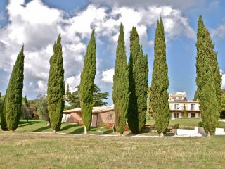 Bibbona Italy Vacation Rentals - Apartment