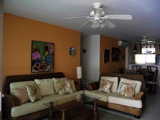 El Farallon del Chiru Panama Vacation Rentals - Apartment