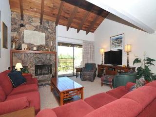 Sun Valley Idaho Vacation Rentals - Apartment