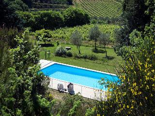 Vaison-la-Romaine France Vacation Rentals - Villa