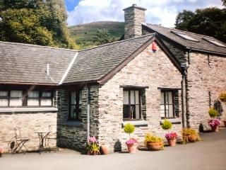 Eglwys Fach Wales Vacation Rentals - Home