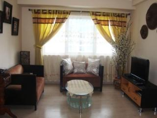 Taguig City Philippines Vacation Rentals - Apartment
