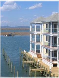 Chincoteague Island Virginia Vacation Rentals - Apartment