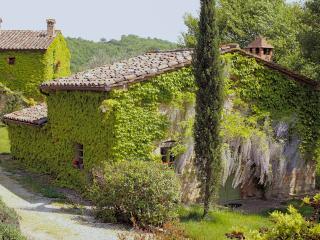 Montone Italy Vacation Rentals - Farmhouse / Barn