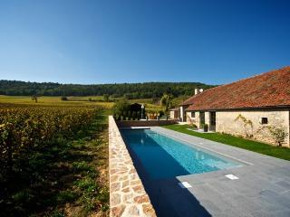 Beaune France Vacation Rentals - Villa