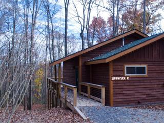 Lansing West Virginia Vacation Rentals - Apartment