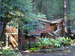 Cazadero California Vacation Rentals - Home