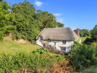 Cheriton Bishop England Vacation Rentals - Home