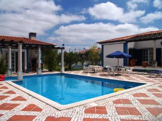 Cartaxo Portugal Vacation Rentals - Villa