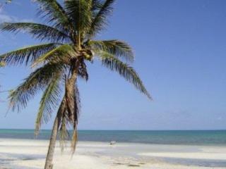 Long Key Florida Vacation Rentals - Home