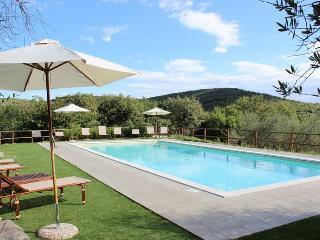 Castellina In Chianti Italy Vacation Rentals - Villa