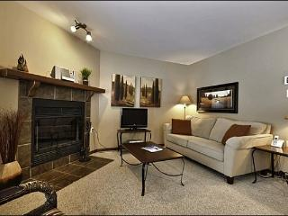 The Living Area is Cozy and Features a Sleeper Sofa , Fireplace and Flat Screen TV