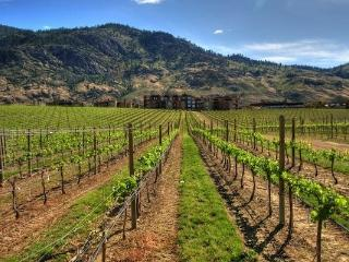 Osoyoos Canada Vacation Rentals - Home