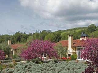 Sebastopol California Vacation Rentals - Villa