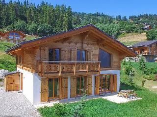 La tzoumaz Switzerland Vacation Rentals - Villa