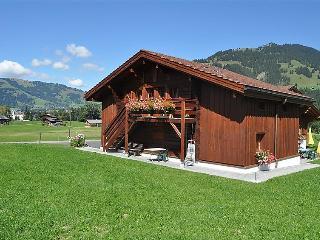 Gstaad Switzerland Vacation Rentals - Apartment