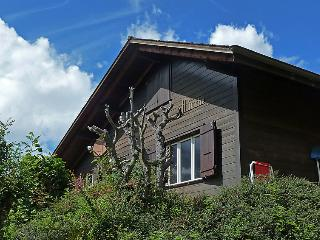 Wengen Switzerland Vacation Rentals - Villa