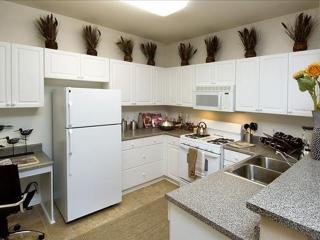 Pleasanton California Vacation Rentals - Apartment