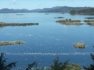 Sitka Alaska Vacation Rentals - Apartment