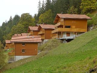 Wengen Switzerland Vacation Rentals - Apartment