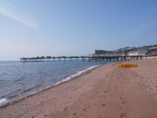 Ilsington England Vacation Rentals - Home