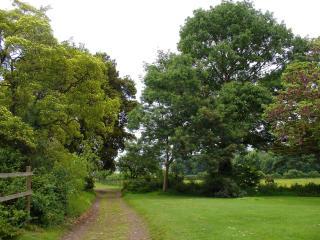 Porlock Weir England Vacation Rentals - Home