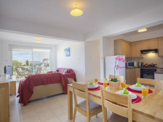 Paralimni Cyprus Vacation Rentals - Apartment