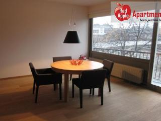 Liege Belgium Vacation Rentals - Studio