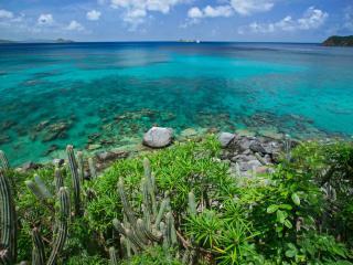 Nail Bay British Virgin Islands Vacation Rentals - Villa