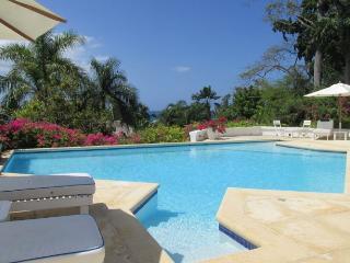 Hope Well Jamaica Vacation Rentals - Villa