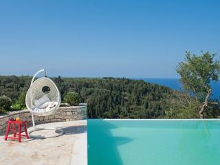 Gaios Greece Vacation Rentals - Villa