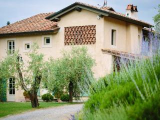Montemagno Di Camaiore Italy Vacation Rentals - Villa