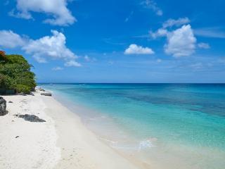 Durants Barbados Vacation Rentals - Villa