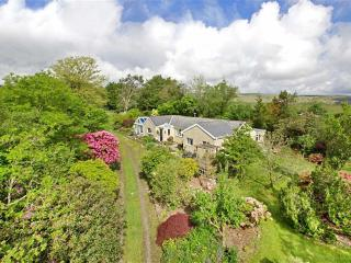 Buckfastleigh England Vacation Rentals - Home