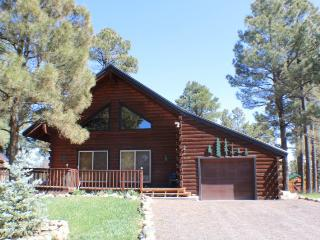 Pagosa Springs Colorado Vacation Rentals - Home